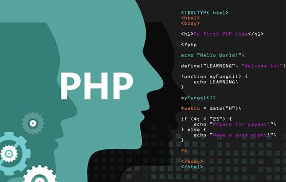 بهترین زبان برنامهنویسی کدام است؟